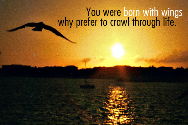 You were born with wings why prefer to crawl through life.