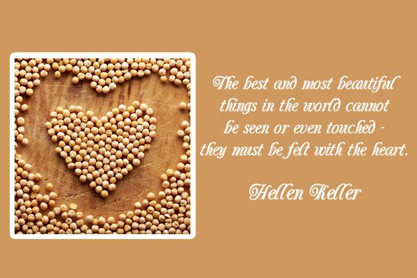The best and most beautiful things in the world cannot be seen or even touched -they must be felt with the heart.