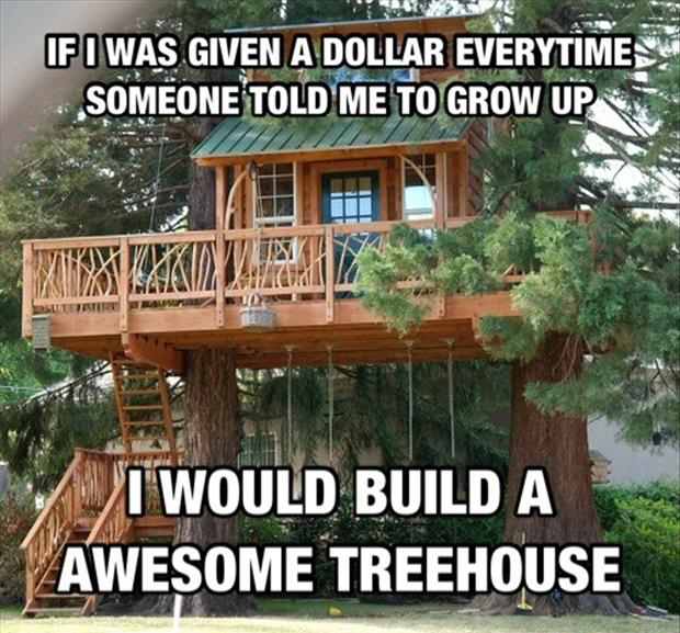 If i was given a dollar everytime someone told me to grow up. I would build awesome treehouse