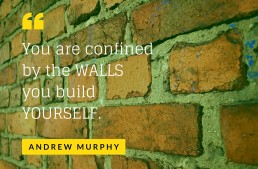 You are confined by the WALLS you build YOURSELF