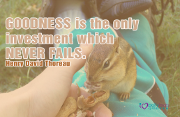 Goodness is the only investment which never fails