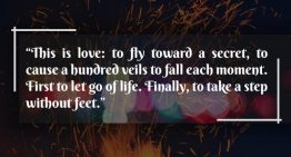 """This is Love To Fly Toward A Secret, To Cause A Hundred Veils To Fall Each Moment.First To Let Go Of Life. Finally To Take A Step Without Feet"""