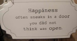 """Happiness Often Sneaks In A Door You Did Not Think Was Open"""
