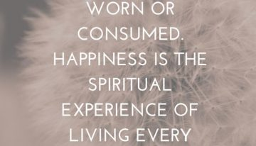"""Happiness Can Not Be Traveled To, Owned,Earned,Worn, or Consumed. Happiness Is The Spiritual Experience Of Living Every Minute With Love, Grace and Gratitude"""