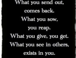 Life is an echo. What you send out, comes back. What you sow, you reap. What you give, you get. What you see in others, exists in you.