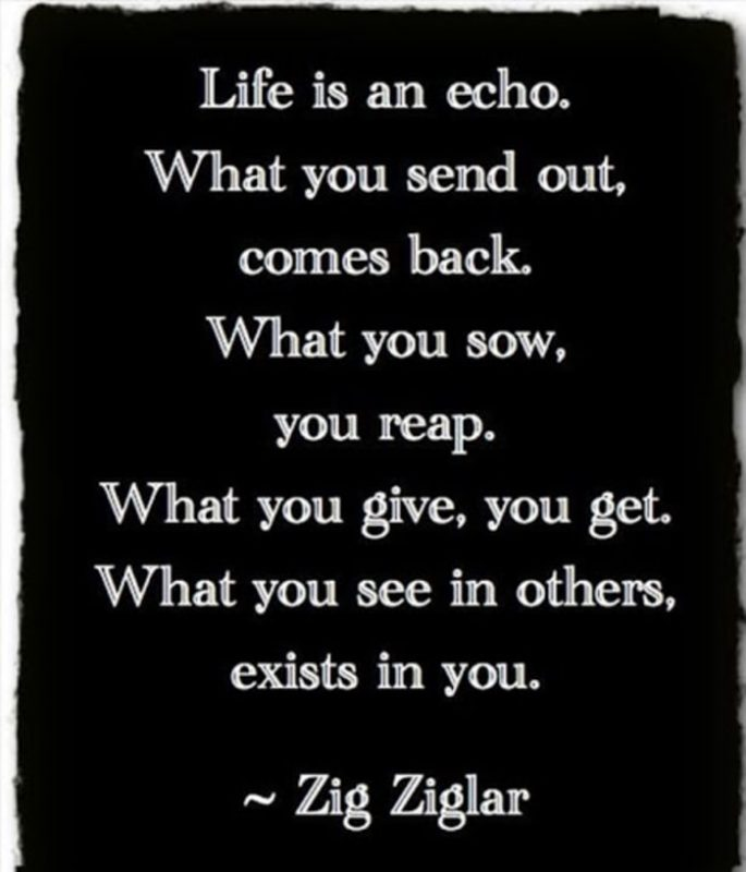 ziglar life quotes