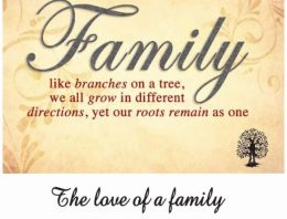 Family. Like branches on a tree, we all grow in different directions, yet our roots remain as one. The love of a family is life's greatest blessing.